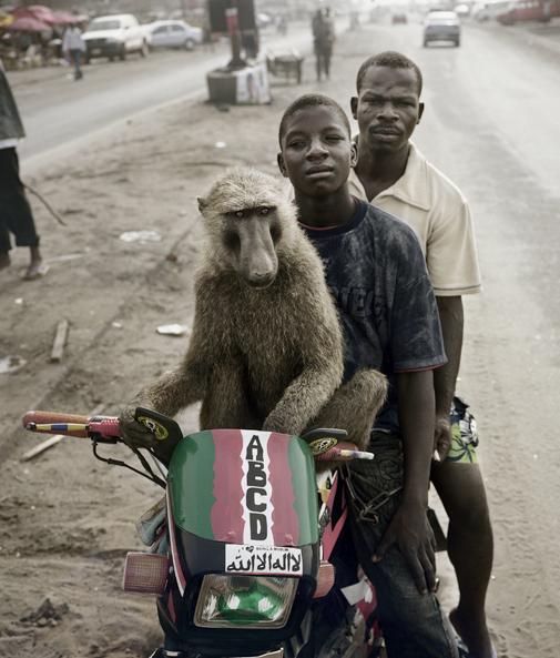 baboonmen