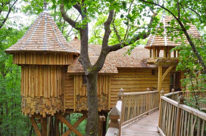 chateaux-dans-les-arbre