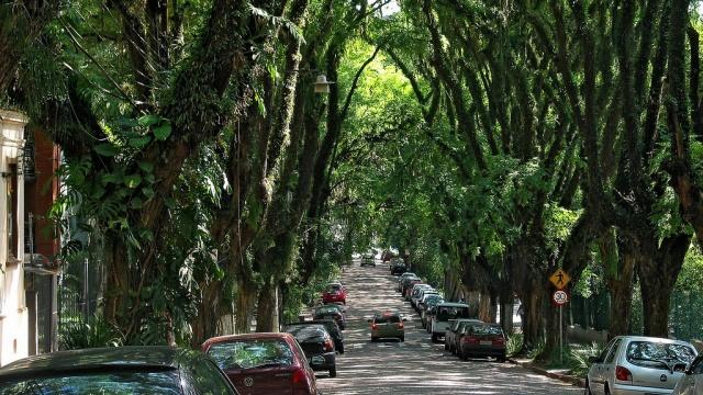 Rua_Gonçalo_de_Carvalho crop