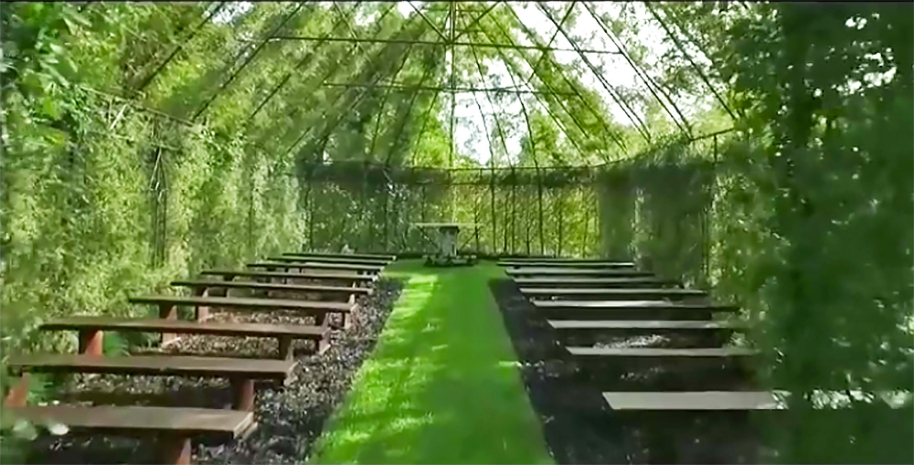 Tree-Church-Barry-Cox-New-Zealand-final